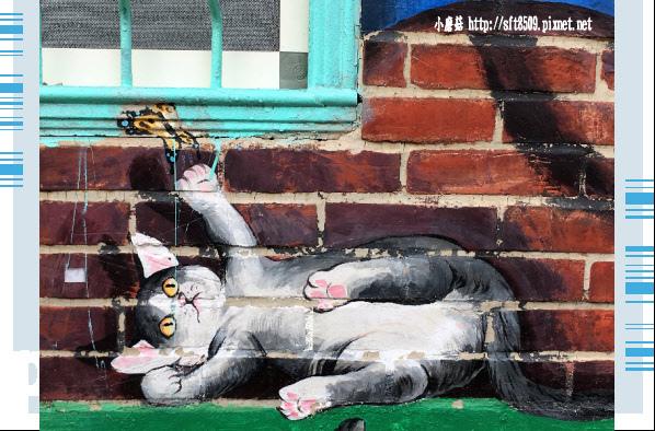 107.6.30.(11)雲林虎尾-屋頂上的貓.JPG