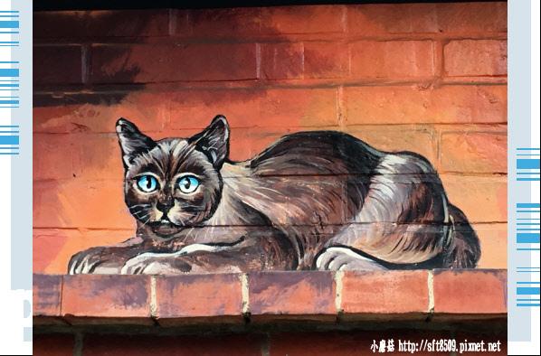 107.6.30.(13)雲林虎尾-屋頂上的貓.JPG