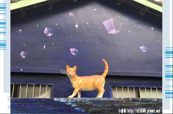 107.6.30.(39)雲林虎尾-屋頂上的貓.JPG
