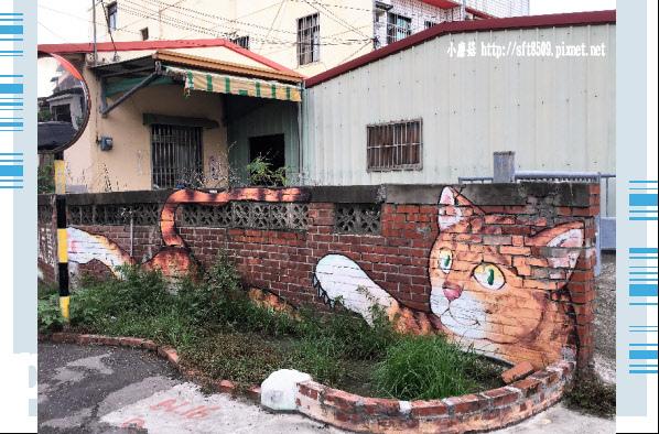 107.6.30.(40)雲林虎尾-屋頂上的貓.JPG