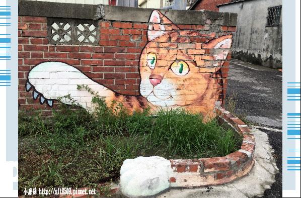 107.6.30.(41)雲林虎尾-屋頂上的貓.JPG