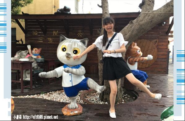 107.6.30.(51)雲林虎尾-屋頂上的貓.JPG