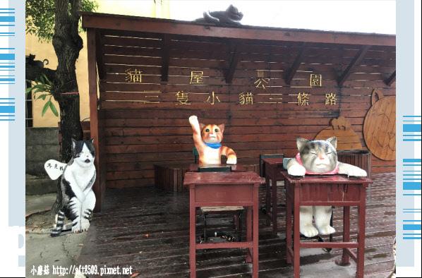 107.6.30.(54)雲林虎尾-屋頂上的貓.JPG