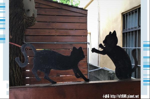 107.6.30.(58)雲林虎尾-屋頂上的貓.JPG