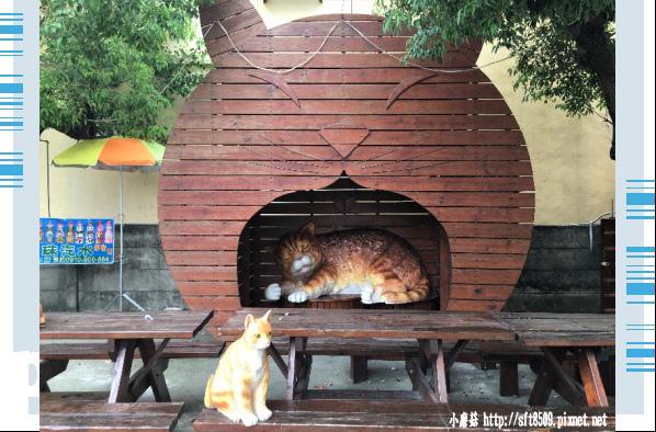 107.6.30.(59)雲林虎尾-屋頂上的貓.JPG