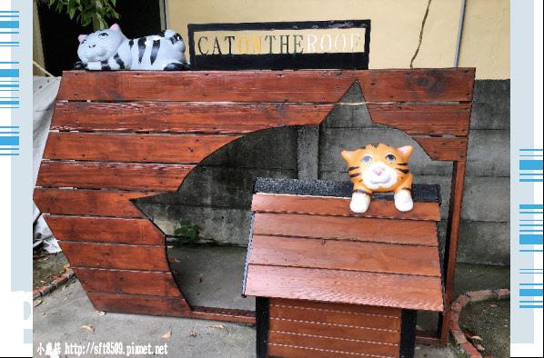 107.6.30.(65)雲林虎尾-屋頂上的貓.JPG