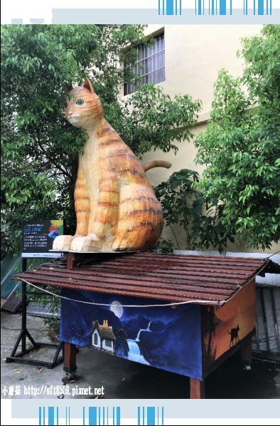 107.6.30.(67)雲林虎尾-屋頂上的貓.JPG