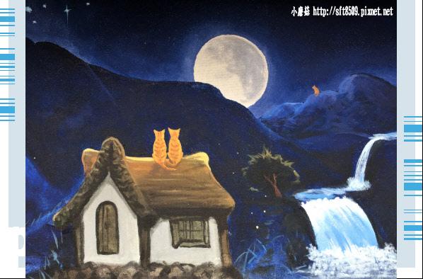 107.6.30.(68)雲林虎尾-屋頂上的貓.JPG