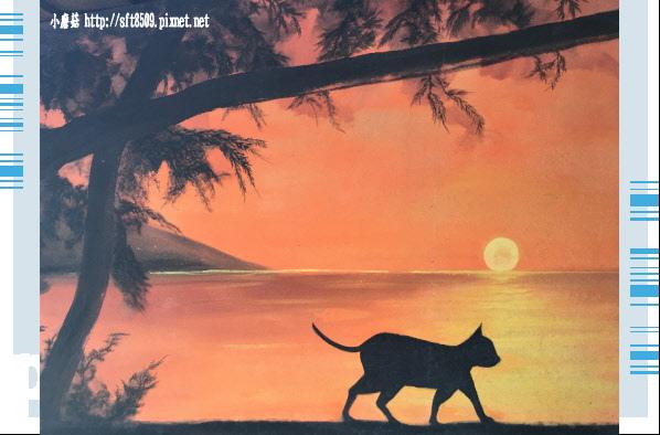 107.6.30.(69)雲林虎尾-屋頂上的貓.JPG