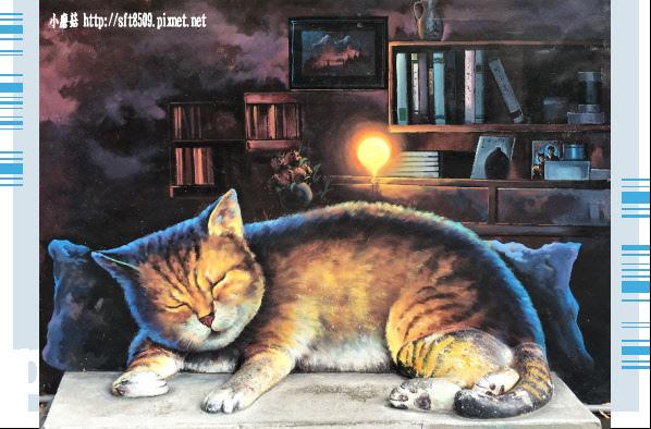 107.6.30.(72)雲林虎尾-屋頂上的貓.JPG