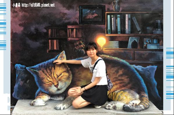 107.6.30.(74)雲林虎尾-屋頂上的貓.JPG