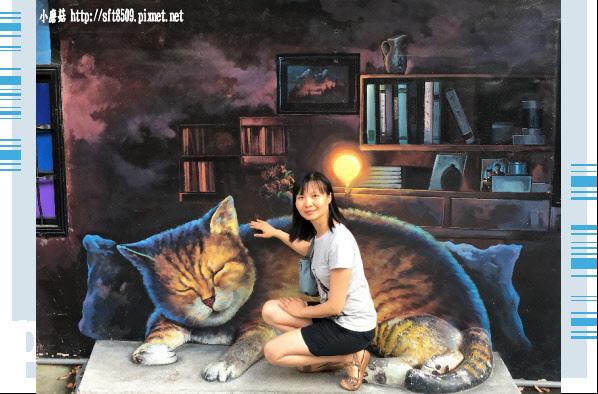 107.6.30.(75)雲林虎尾-屋頂上的貓.JPG