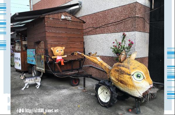 107.6.30.(80)雲林虎尾-屋頂上的貓.JPG