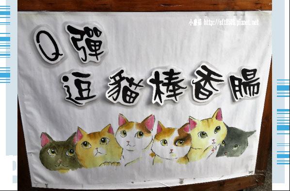 107.6.30.(84)雲林虎尾-屋頂上的貓.JPG