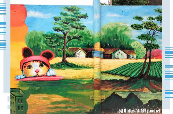 107.6.30.(88)雲林虎尾-屋頂上的貓.JPG