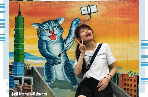107.6.30.(90)雲林虎尾-屋頂上的貓.JPG