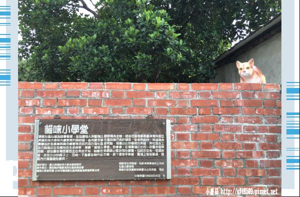 107.6.30.(96)雲林虎尾-貓咪小學堂.JPG