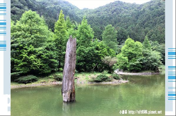 107.6.22.(45)明池森林遊樂區.JPG