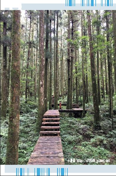 107.6.22.(60)明池森林遊樂區.JPG