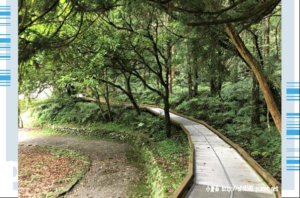 107.6.22.(74)明池森林遊樂區.JPG