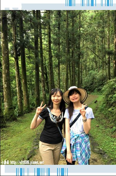 107.6.22.(88)明池森林遊樂區.JPG