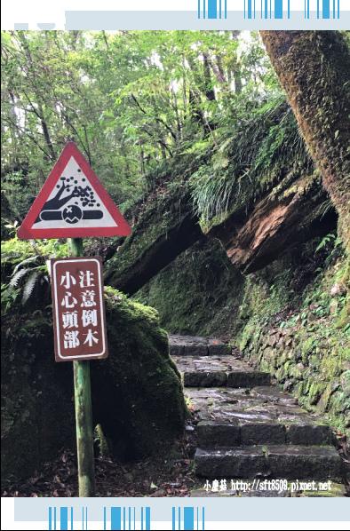 107.6.22.(108)明池森林遊樂區.JPG