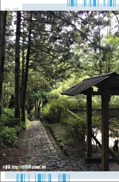 107.6.22.(132)明池森林遊樂區.JPG