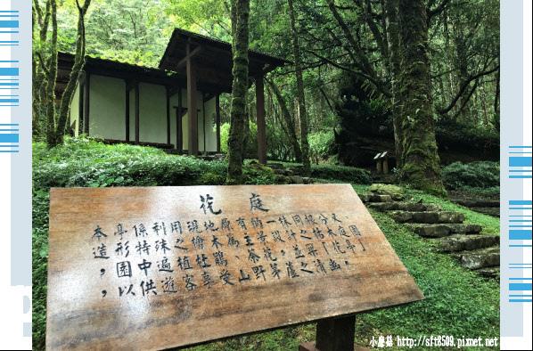 107.6.22.(139)明池森林遊樂區.JPG