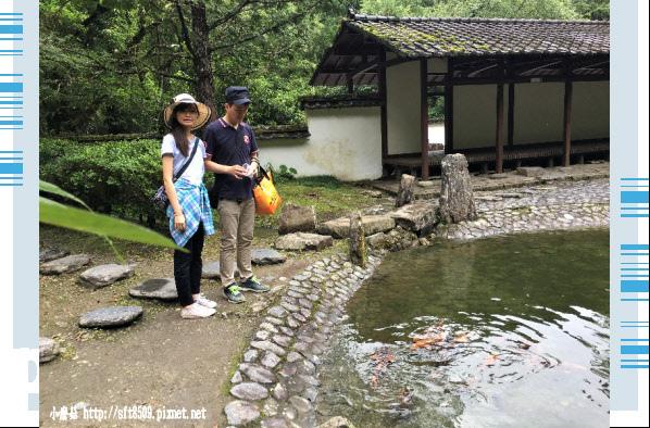107.6.22.(143)明池森林遊樂區.JPG