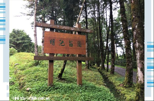 107.6.22.(174)明池森林遊樂區.JPG
