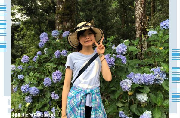 107.6.22.(188)明池森林遊樂區.JPG
