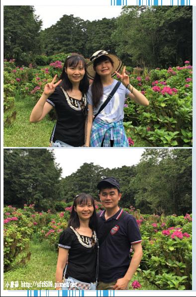107.6.22.(211)明池森林遊樂區.JPG