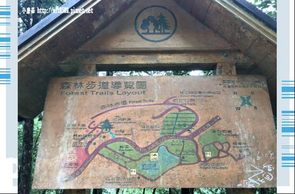 107.6.22.(249)明池森林遊樂區.JPG