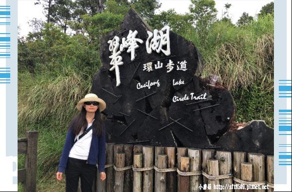 107.6.23.(6)太平山-翠峰湖環山步道.JPG