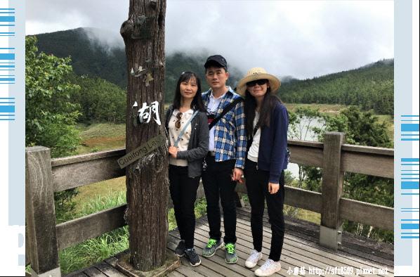 107.6.23.(21)太平山-翠峰湖環山步道.JPG