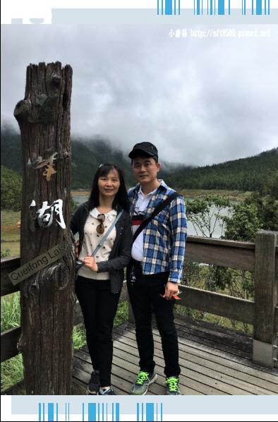 107.6.23.(25)太平山-翠峰湖環山步道.JPG