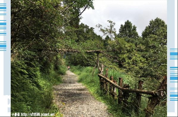 107.6.23.(42)太平山-翠峰湖環山步道.JPG
