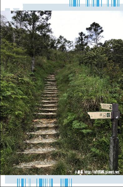 107.6.23.(50)太平山-翠峰湖環山步道.JPG