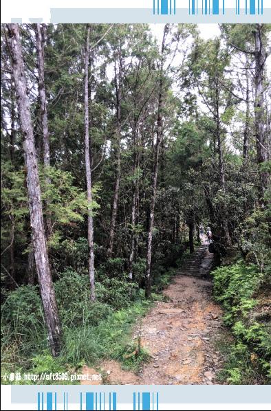 107.6.23.(51)太平山-翠峰湖環山步道.JPG