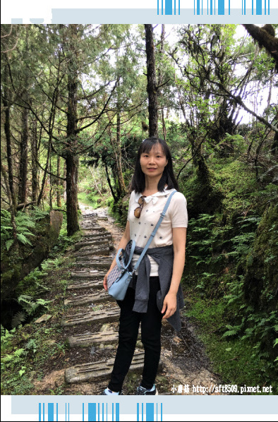107.6.23.(53)太平山-翠峰湖環山步道.JPG