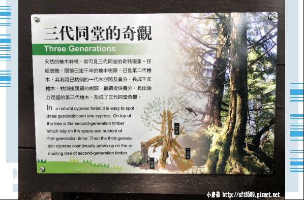 107.6.23.(75)太平山-翠峰湖環山步道.JPG