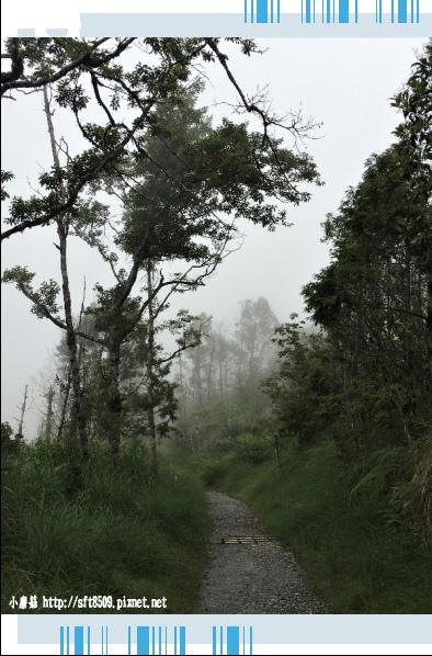 107.6.23.(103)太平山-翠峰湖環山步道.JPG