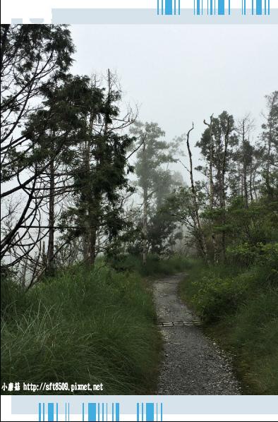 107.6.23.(104)太平山-翠峰湖環山步道.JPG