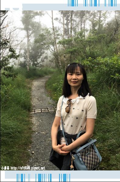 107.6.23.(107)太平山-翠峰湖環山步道.JPG