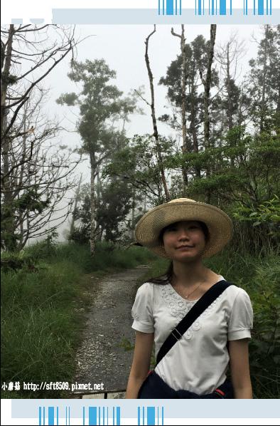 107.6.23.(108)太平山-翠峰湖環山步道.JPG