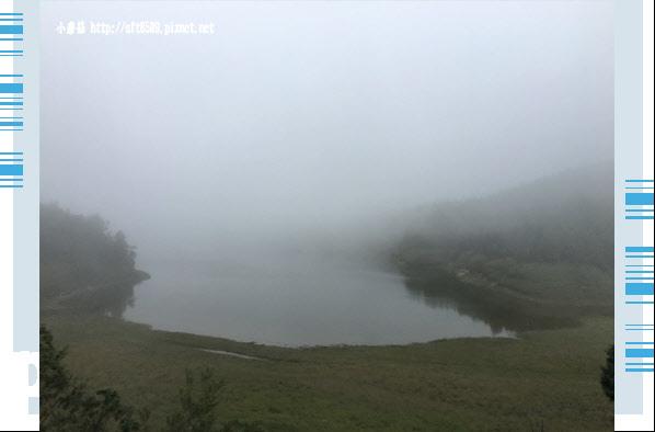 107.6.23.(112)太平山-翠峰湖環山步道.JPG