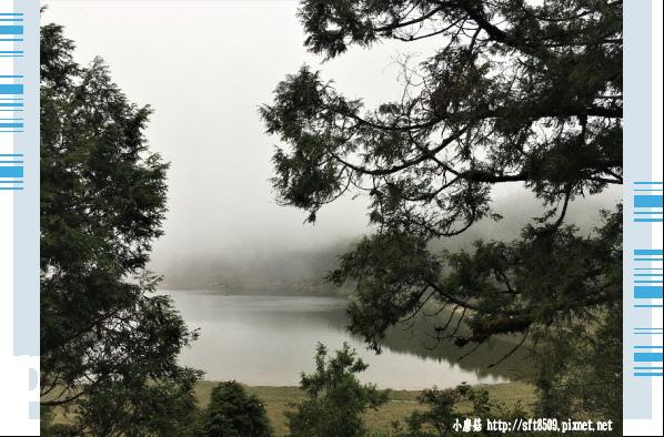 107.6.23.(115)太平山-翠峰湖環山步道.JPG