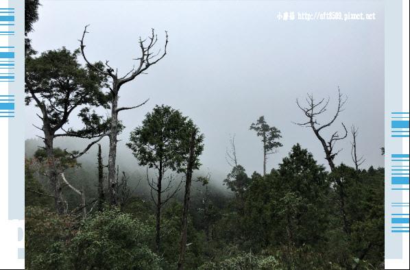 107.6.23.(119)太平山-翠峰湖環山步道.JPG