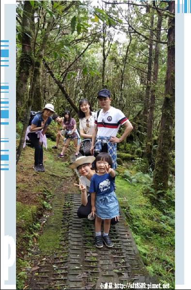 107.6.23.(121)太平山-翠峰湖環山步道.JPG