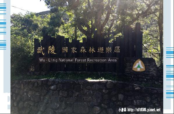 107.6.24.(1)武陵農場-桃山瀑布.JPG
